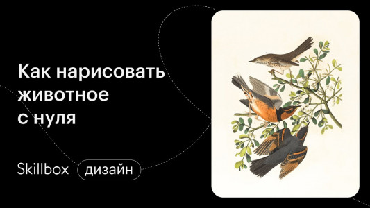 Рисуем животное