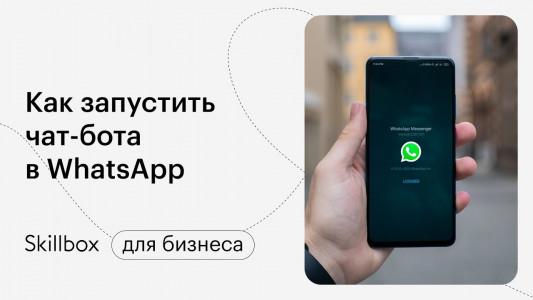 Как запустить чат-бота в WhatsApp и сколько это стоит